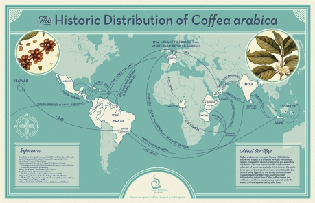 Historic Distribution of Coffea arabica.  Image: Specialty Coffee Association of America via npr.org